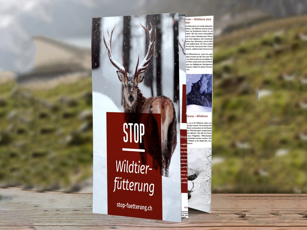 Flyer Stop Wildtierfütterung